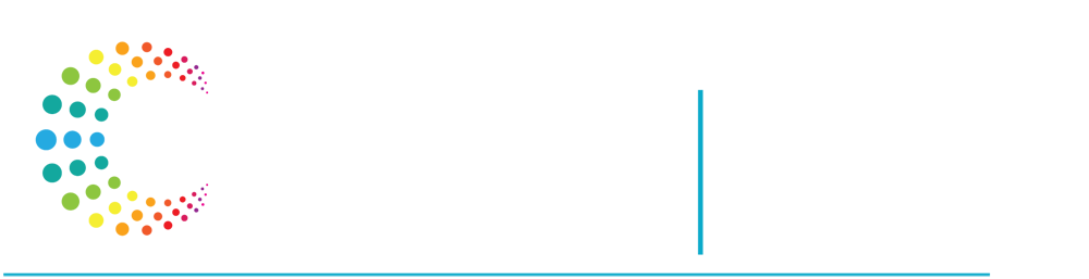 Inclusive Companies